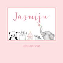 Geboortekaartjes - Geboorte Baby diertjes meisje