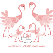 Geboortekaartjes - Geboorte derde kindje Flamingo 4