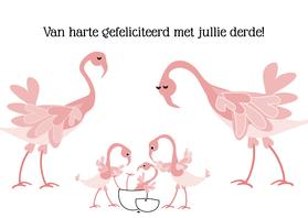 Geboortekaartjes - Geboorte derde kindje Flamingo L