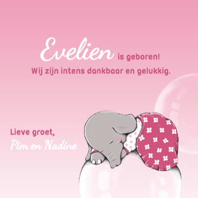 Geboorte dromend olifantje - IH 3