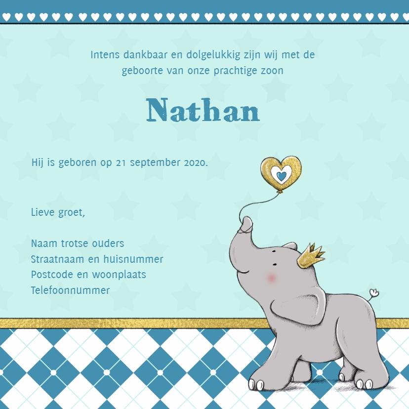 Geboorte jongen olifant goud-IH 3
