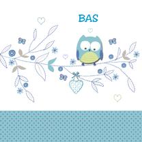 Geboortekaartjes - geboorte jongen uiltje blauw