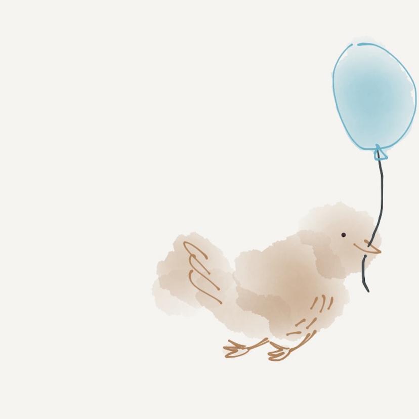 Geboorte Jongen Vier Vogeltjes 2