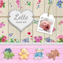 Geboortekaartjes - Geboorte knuffels en hart m