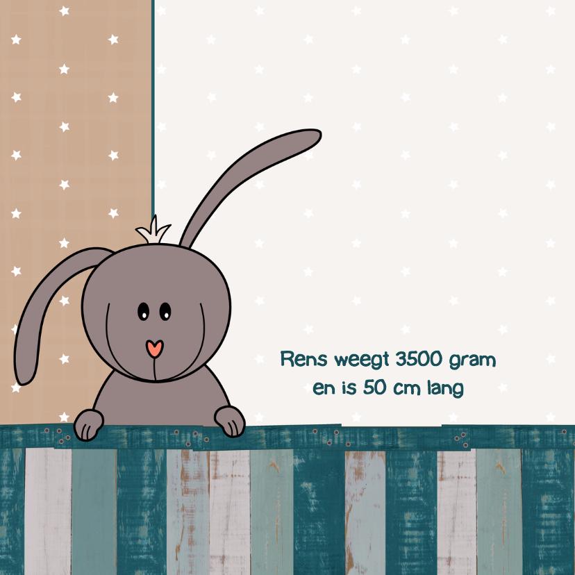Geboorte konijn ster jongen 2