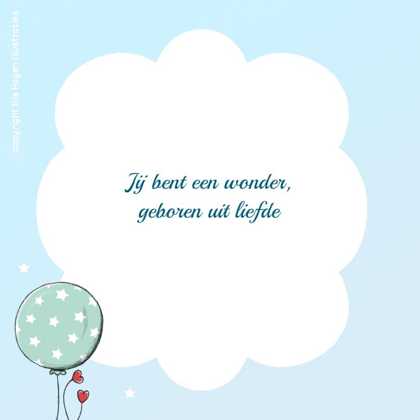 Geboorte leeuwtje ballonnen - IH 2
