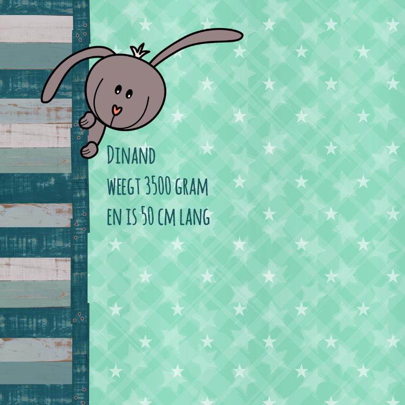 geboorte lief konijn mintgroen 2