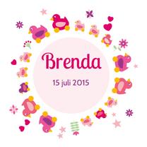 Geboortekaartjes - Geboorte meisje eend op wiel 3