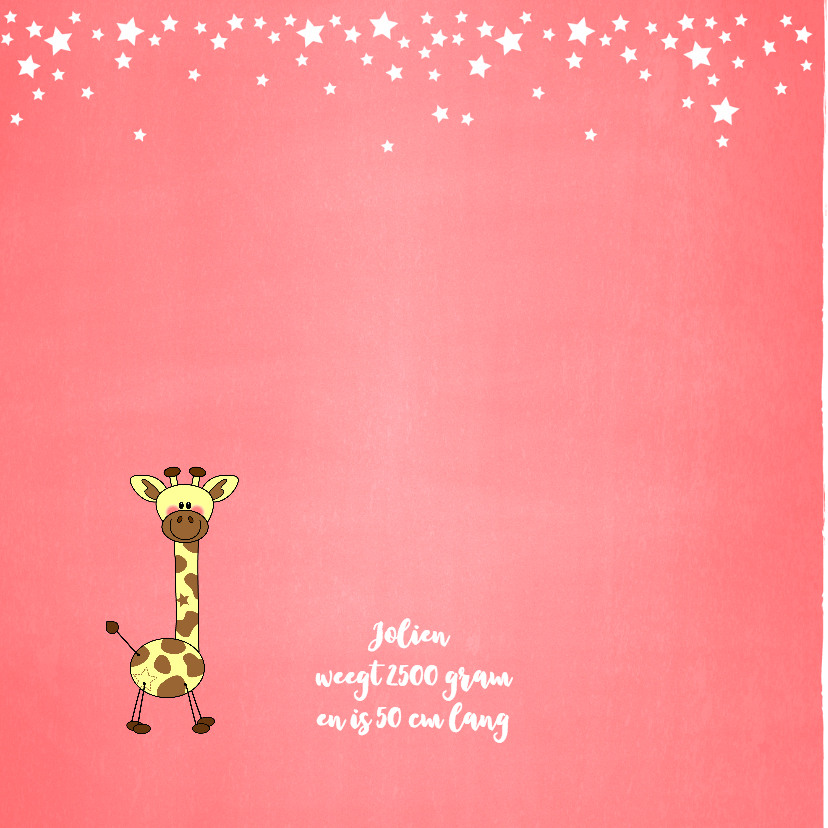 Geboorte meisje lief schattig girafje zalm 2