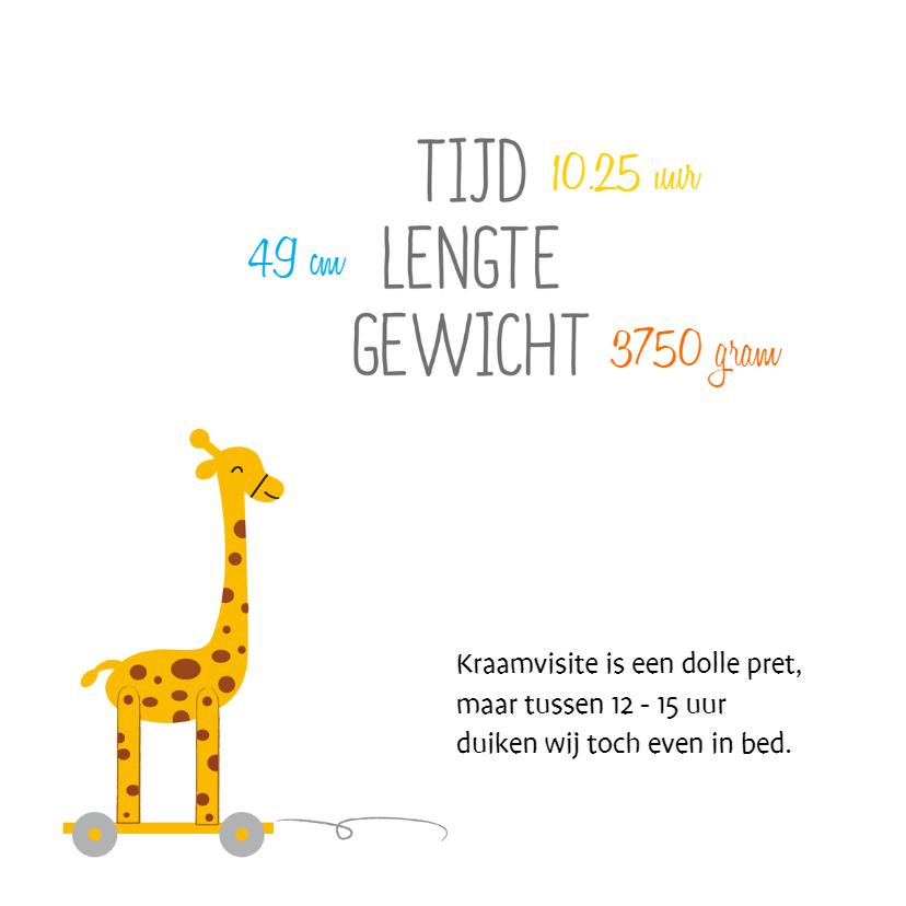 Geboorte met speelgoed giraf 2