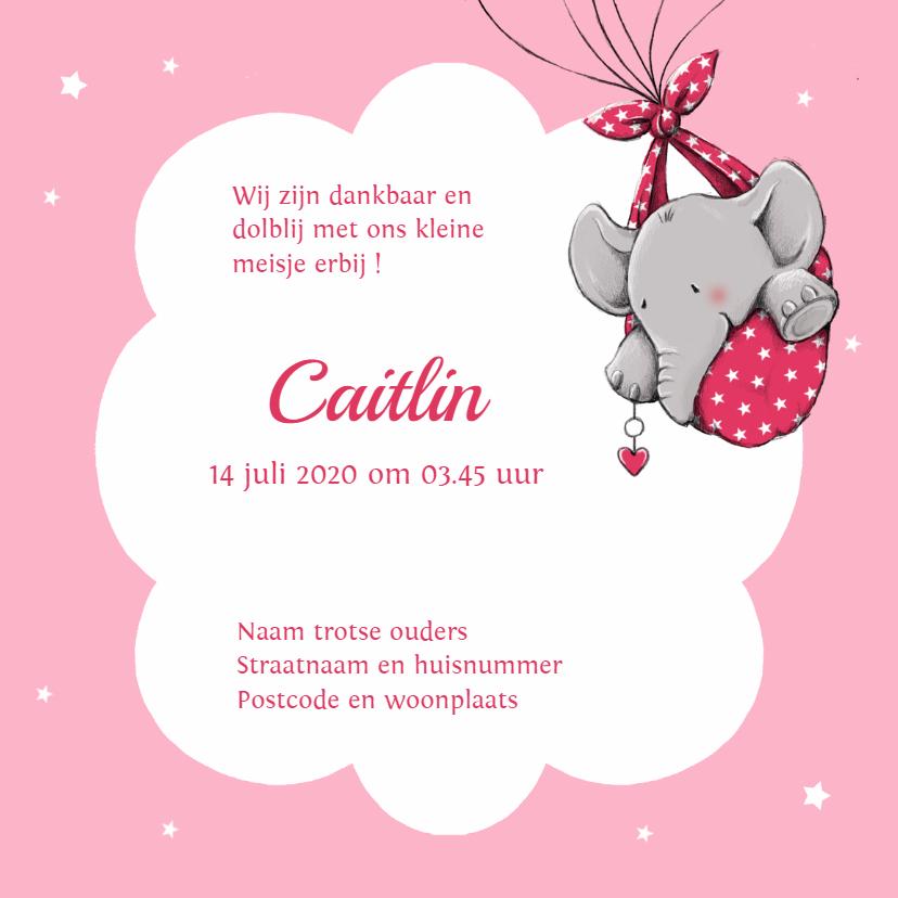 Geboorte olifant hart ballon -IH 3