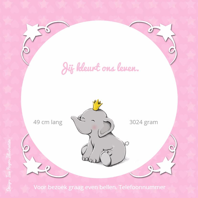 Geboorte olifant vogeltje - IH 2
