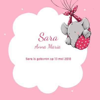 Geboorte olifantje harten - iH 3