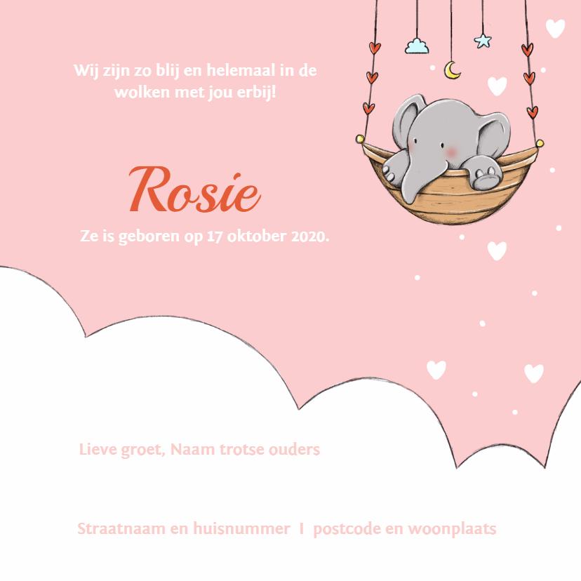 Geboorte olifantje wolk Rosie IH 3