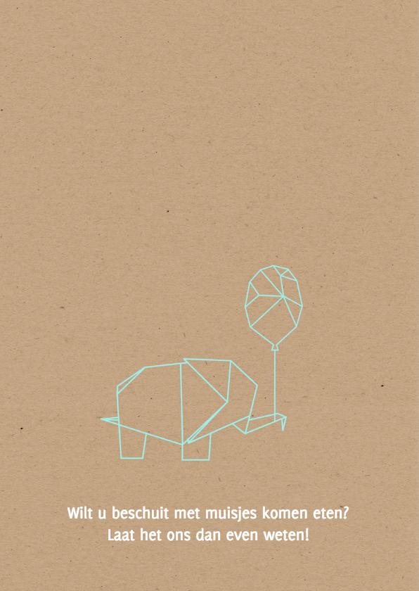 Geboorte - Origami olifant zoon 2