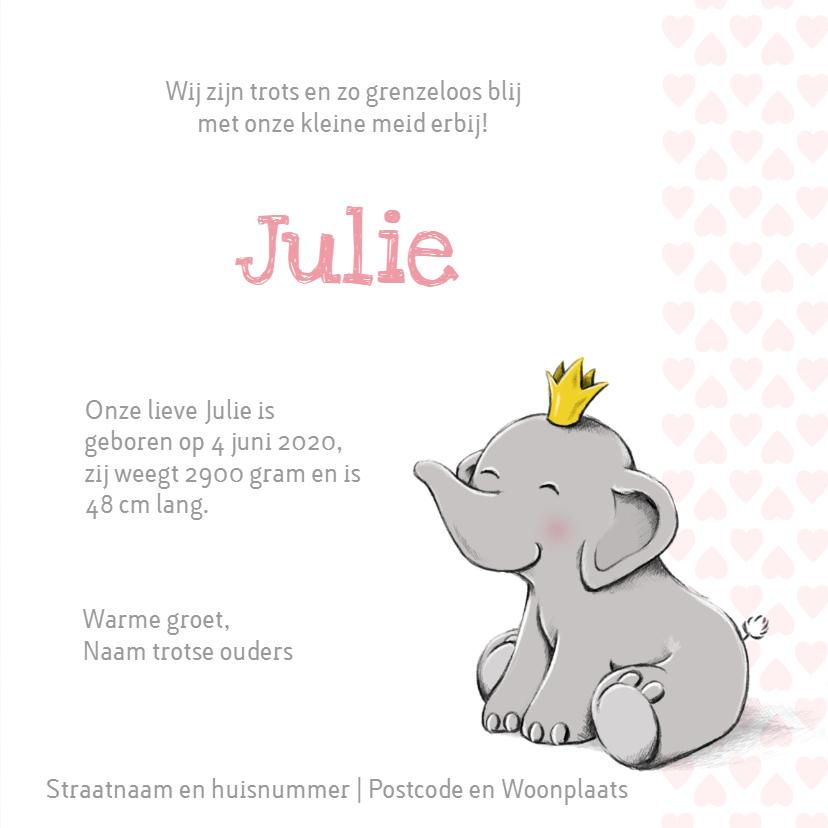 Geboorte prinses olifantje - IH 3
