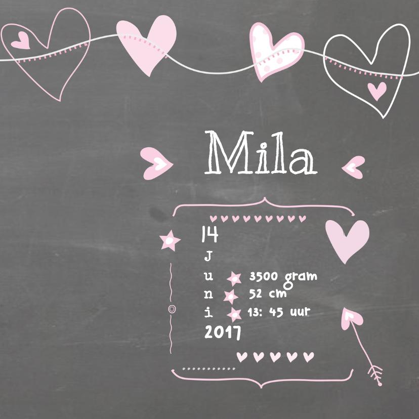 Geboorte Schoolbord Foto Mila 3