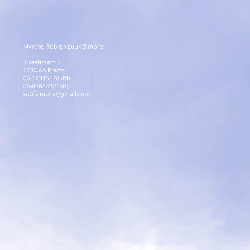 Geboorte silhouet waterverf kolibrie 2