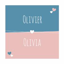 Geboortekaartjes - Geboorte - Tweeling, harten