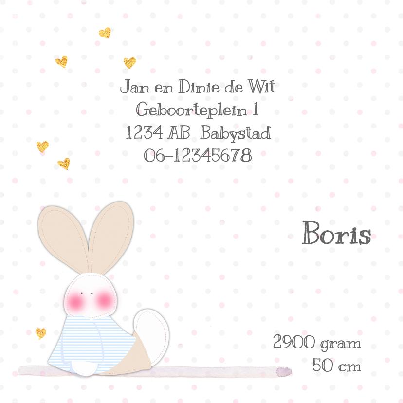 Geboorte tweeling j/m konijn 2