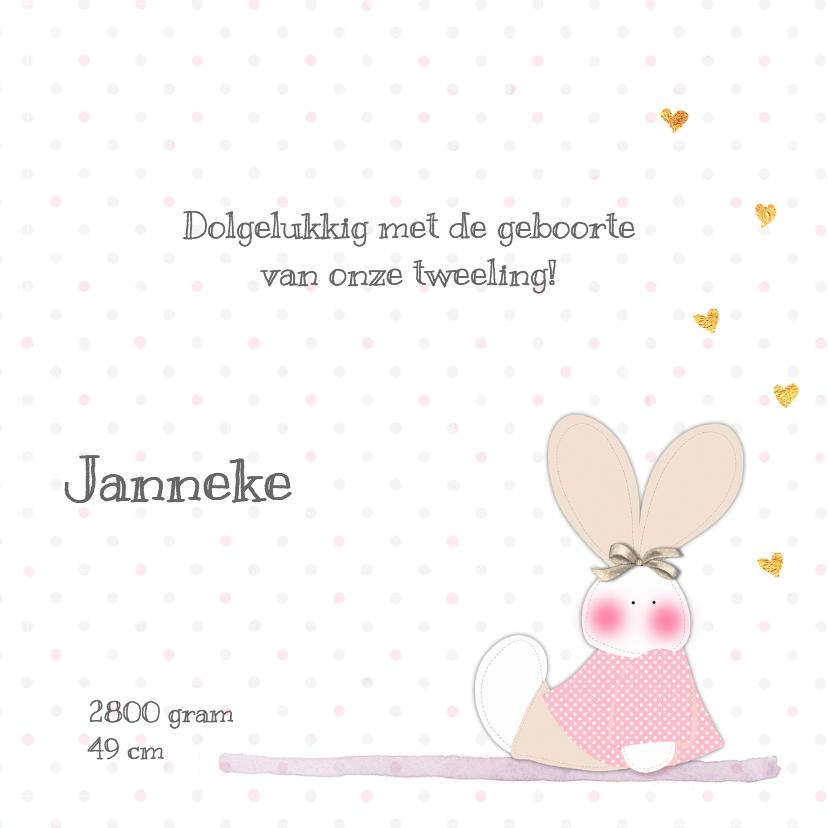 Geboorte tweeling j/m konijn 3