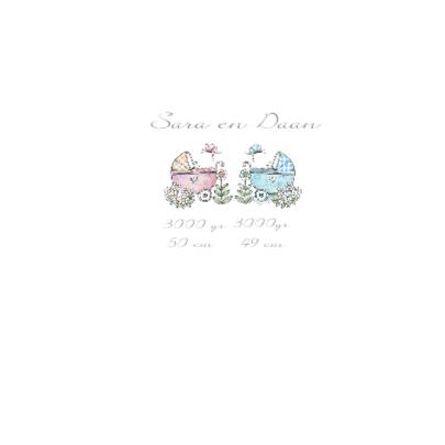 geboorte tweeling meisje jongen wagen 2