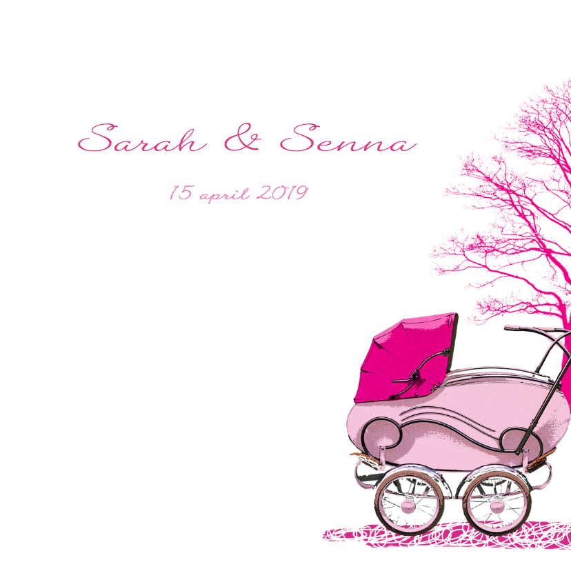 geboorte-tweeling-rozewagens-HR 2
