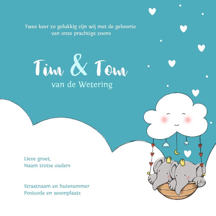 Geboorte tweeling Tim en Tom IH 3