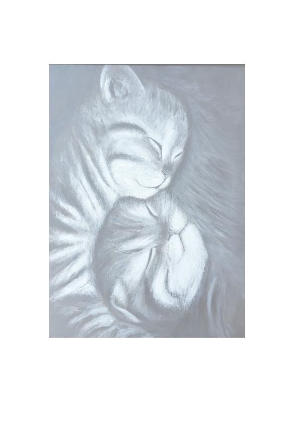 geboorte van tweeling kat 2