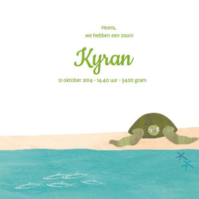 Geboortekaart dolfijn schildpad 3