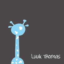 Geboortekaartjes - Geboortekaart giraf jongen