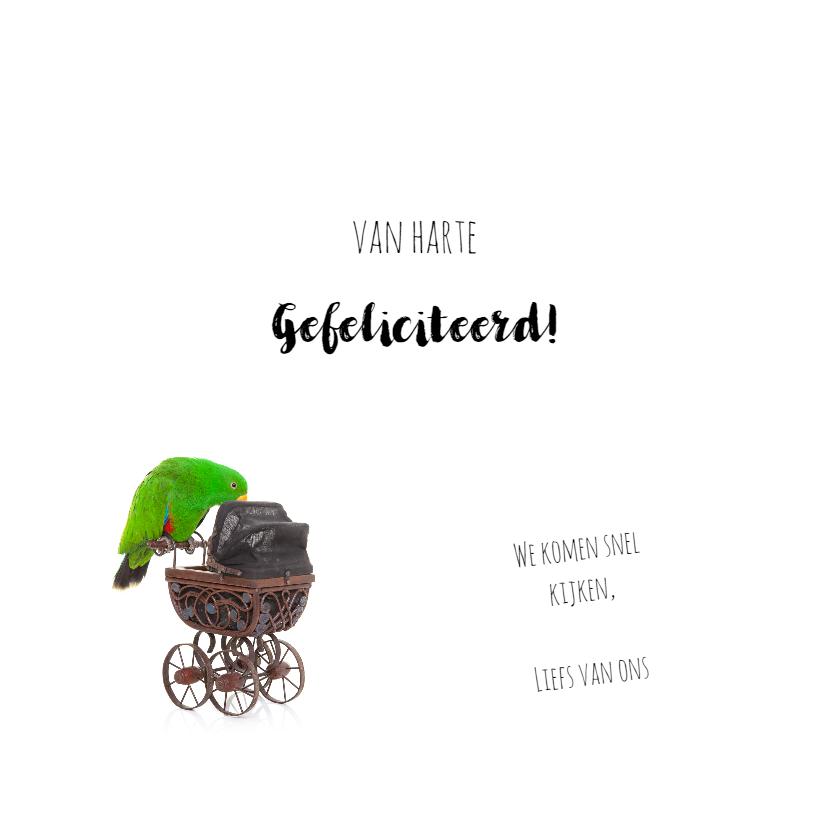 Geboortekaart | Hoera een jongen | Papegaai kinderwagen 3