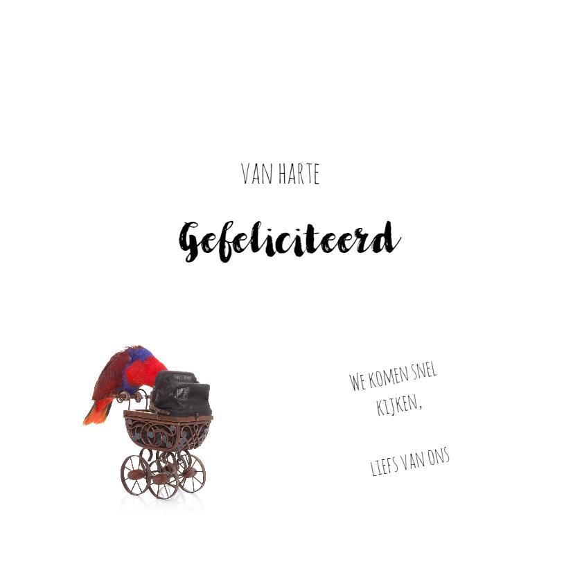 Geboortekaart | Hoera een meisje | Papegaai kinderwagen 3