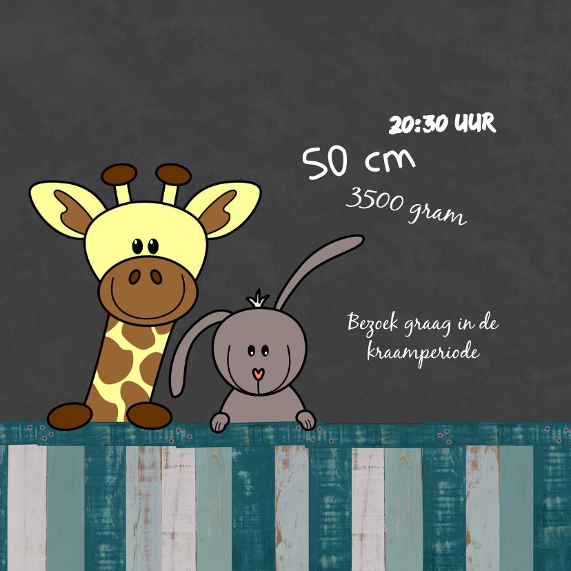Geboortekaart jongen dieren HB 2