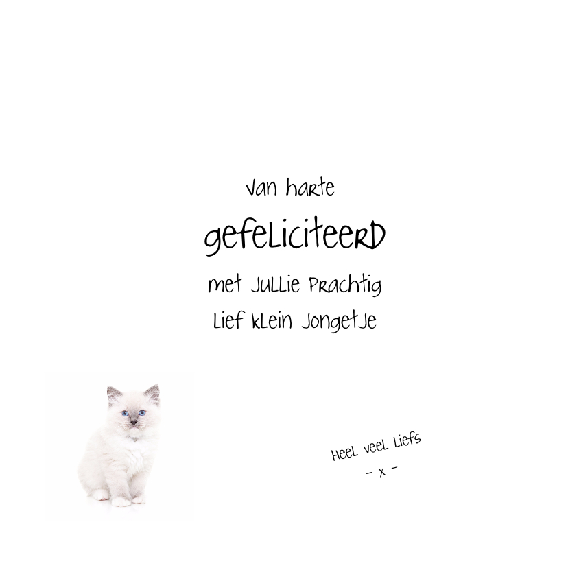 Geboortekaart - Kitten It's a boy 3