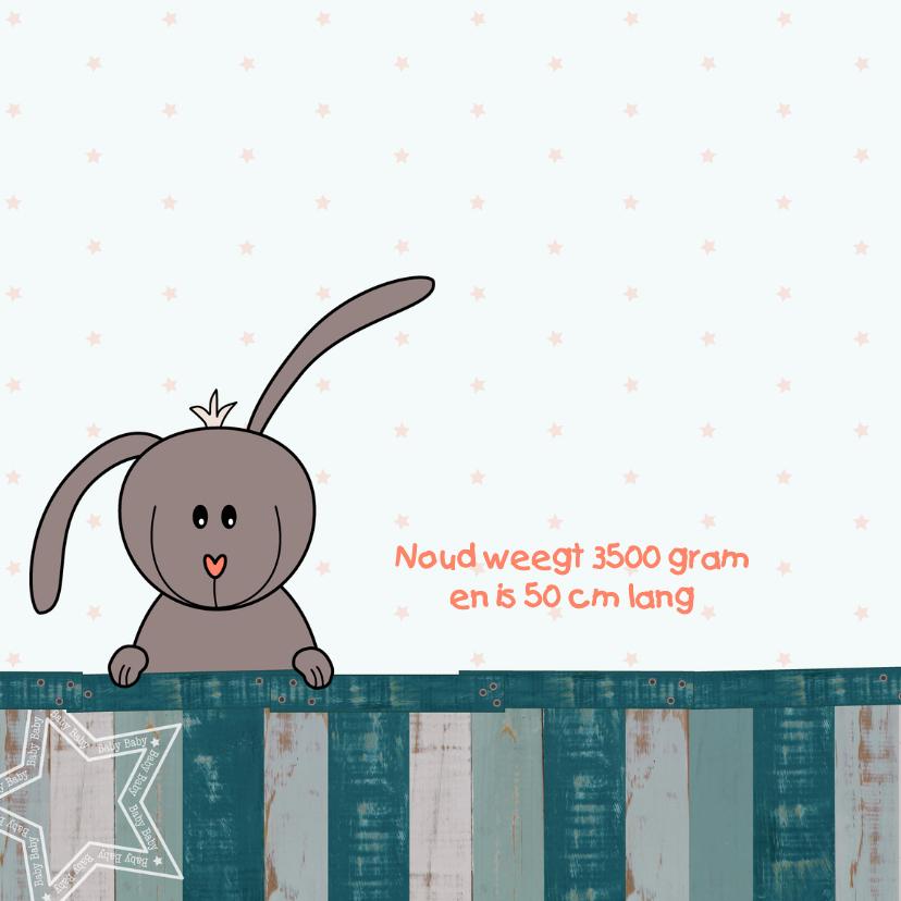 Geboortekaart - konijn - jongen  2