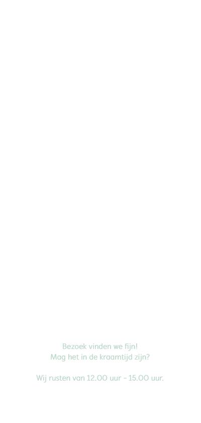 Geboortekaart langwerpig groen wit pictogrammen - BC achterkant