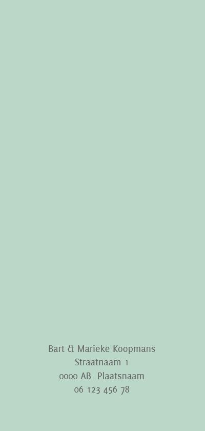 Geboortekaart langwerpig pictogrammen roze - BC achterkant