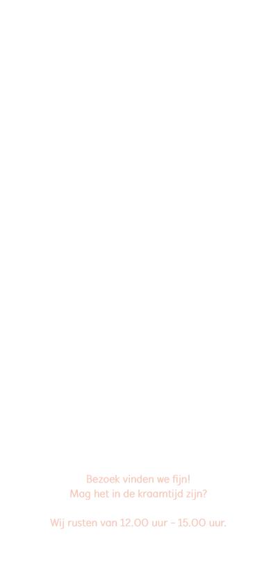 Geboortekaart langwerpig roze wit pictogrammen - BC achterkant