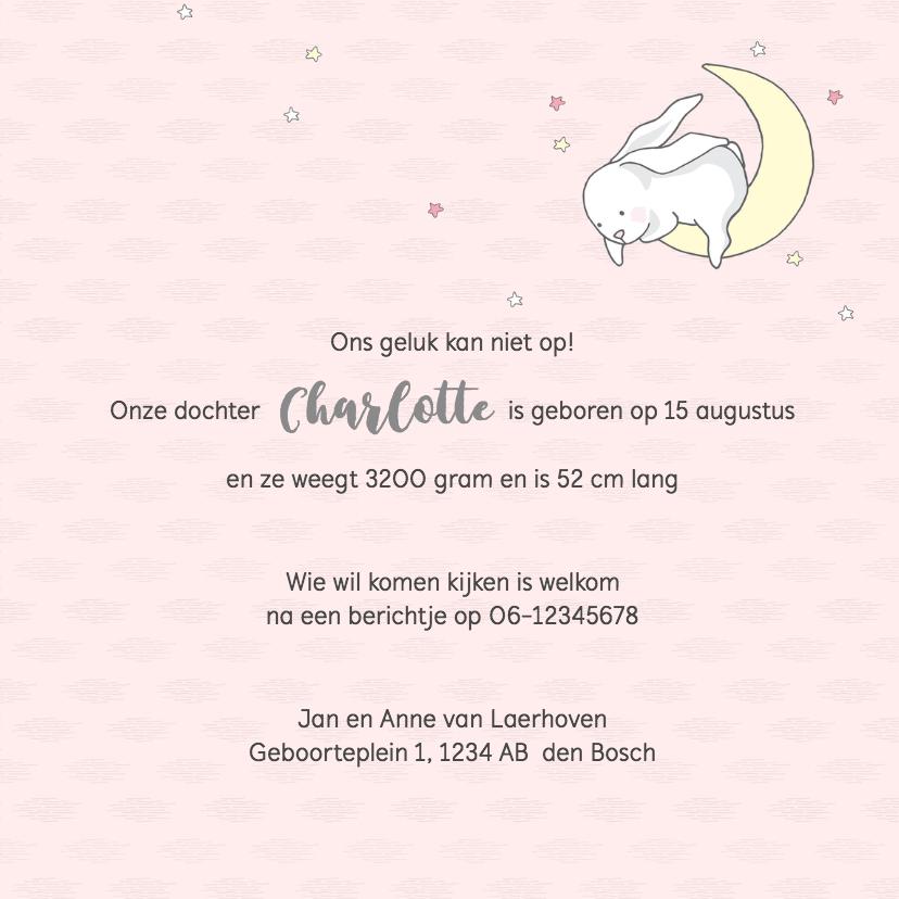 Geboortekaart lief konijntje, sterren, hartjes 3