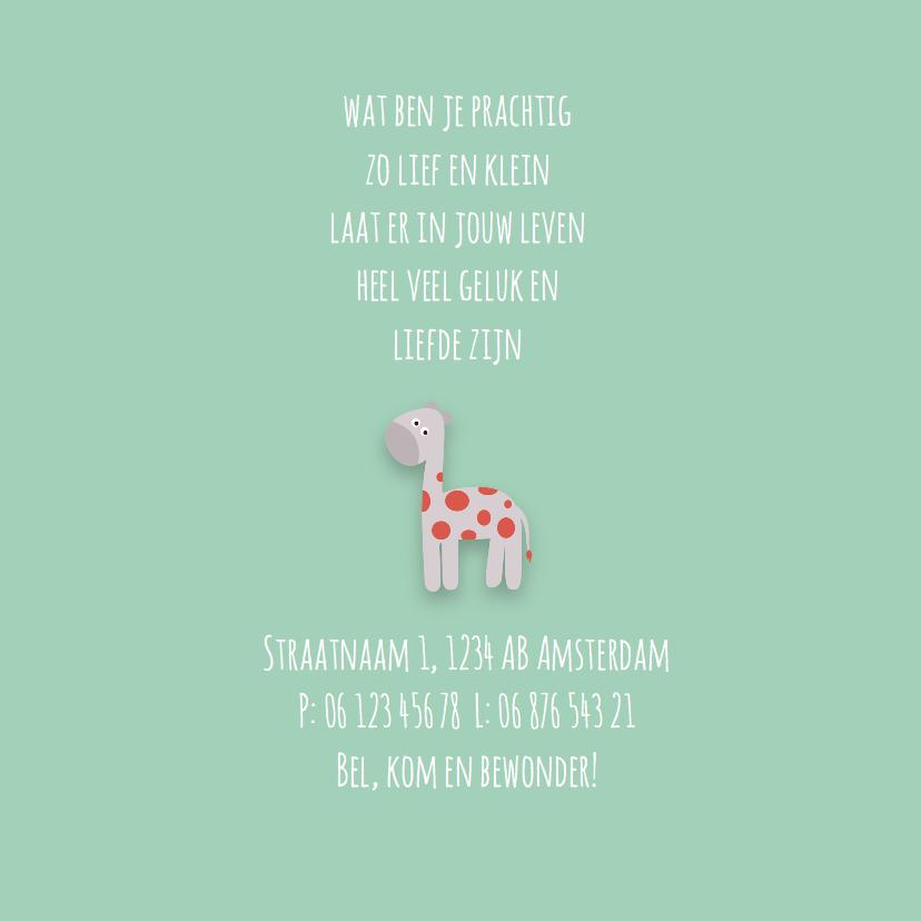 Geboortekaart | M | Giraffe 2