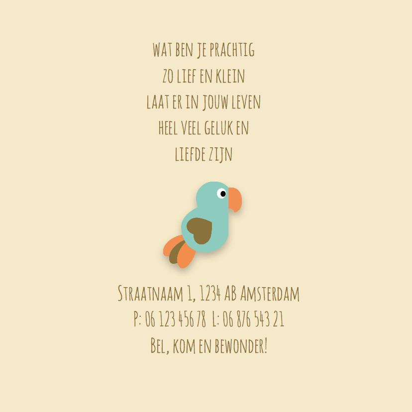 Geboortekaart | M | Papegaai 2