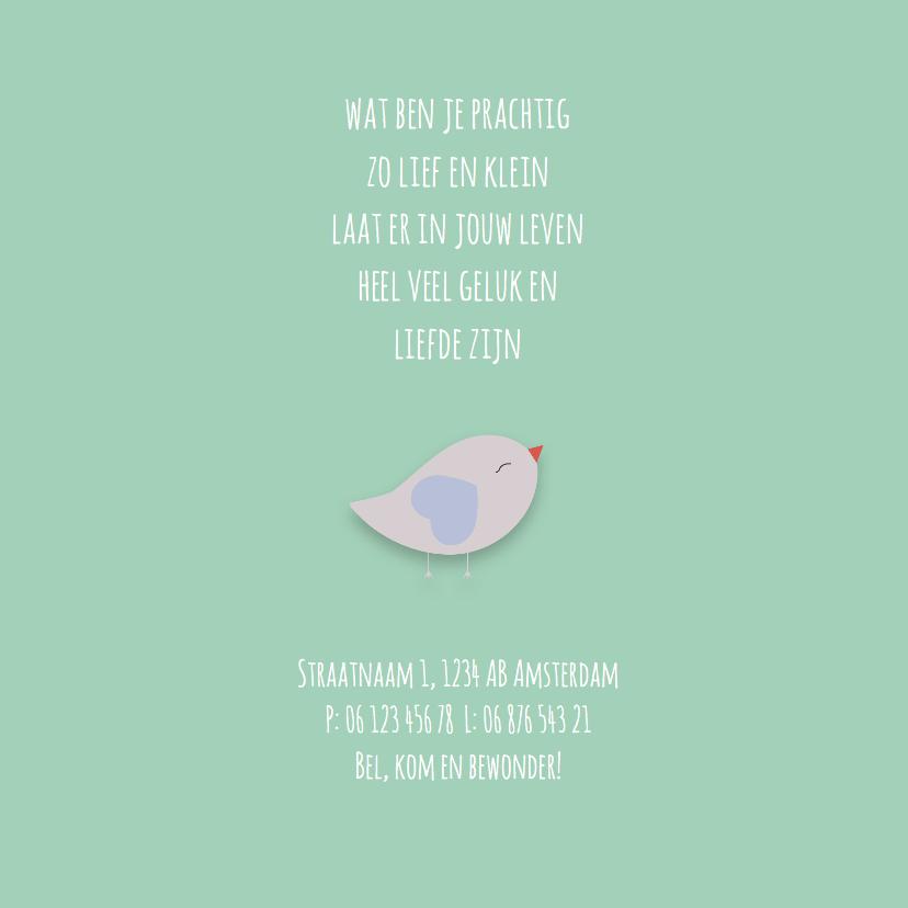 Geboortekaart | M | Vogel 2