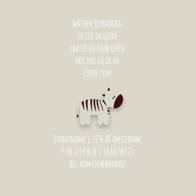 Geboortekaart   M   Zebra 2