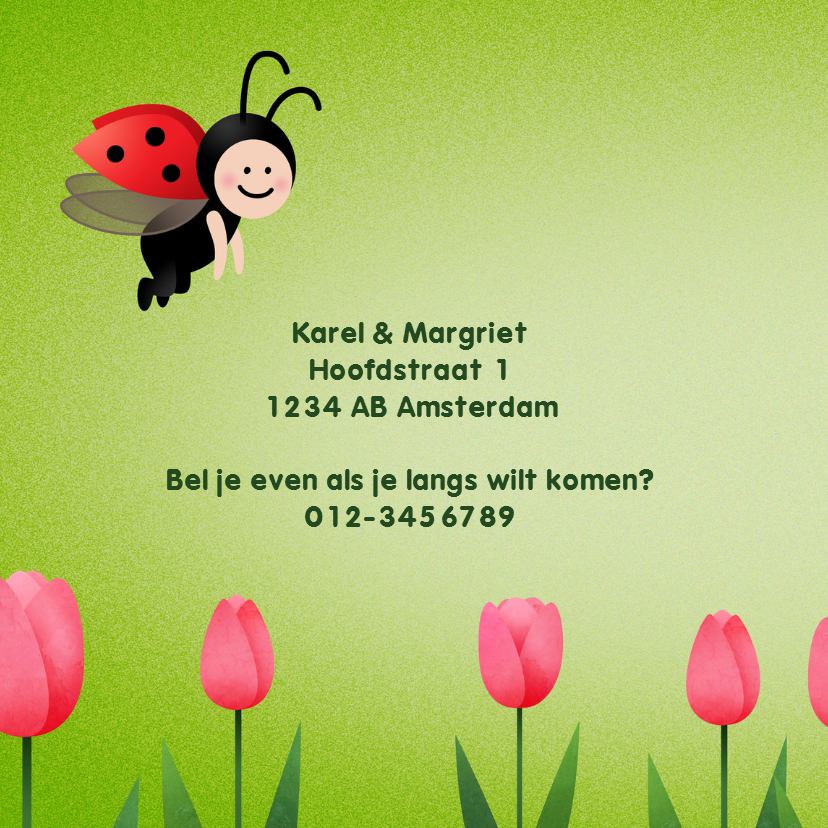 Geboortekaart meisje lieveheersbeestje 2
