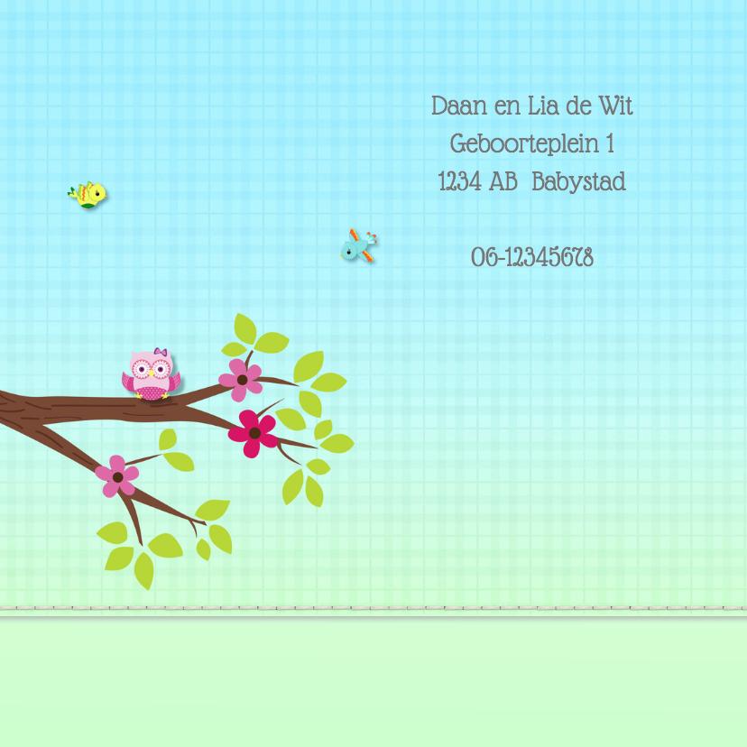 Geboortekaart meisje-uil 2