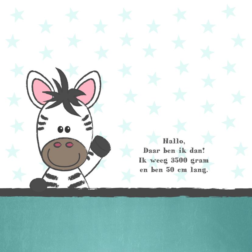 Geboortekaart met illustratie van een schattige baby zebra 2