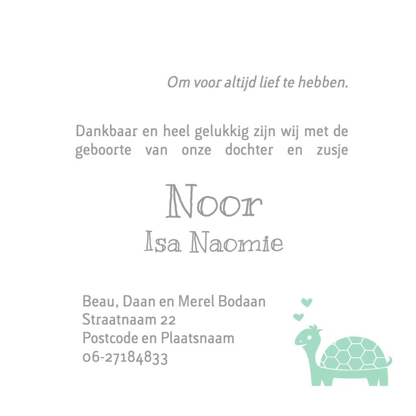 Geboortekaart schildpad familie  3