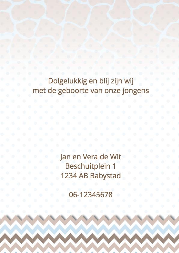 Geboortekaart tweeling staand  3