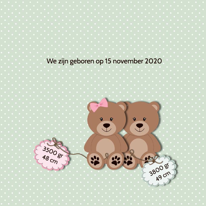 Geboortekaart tweelingberen 2